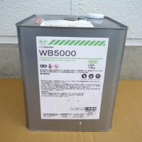 WB5000
