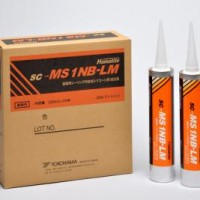 sc-MS 1NB-LM